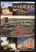 Kniha o Praze 14